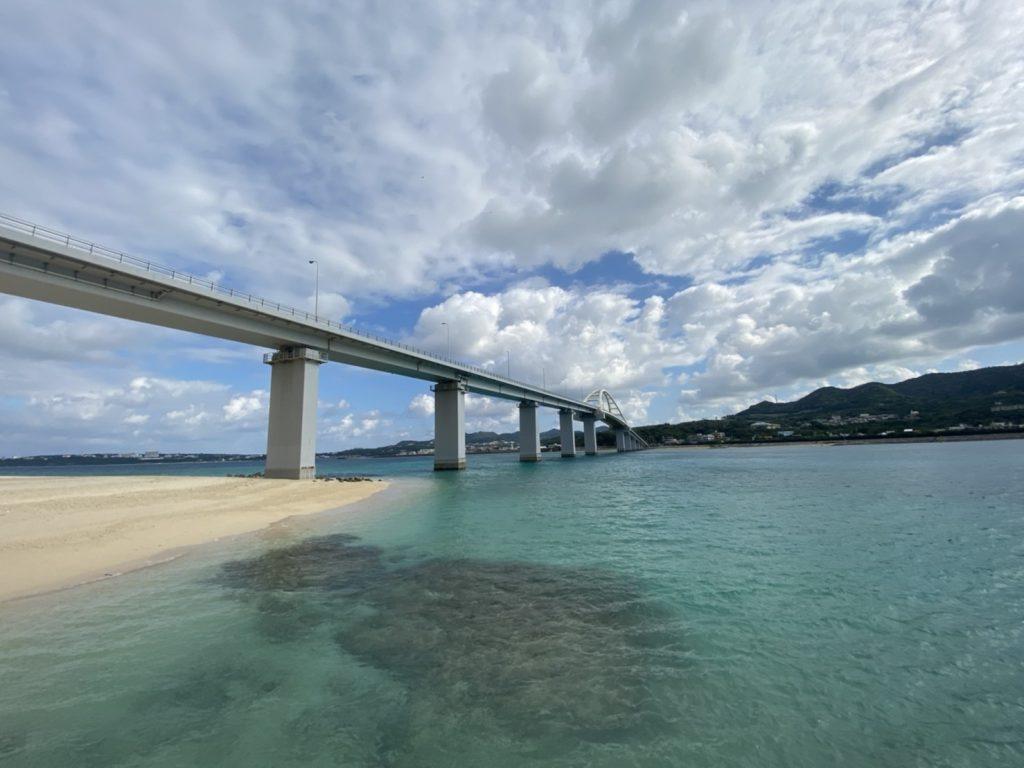 沖縄プロジェクト